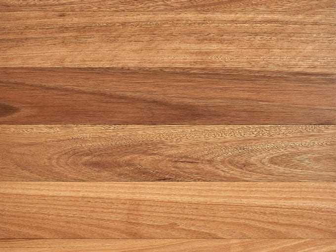 Spotted Gum - Solid Timber Flooring - 80mm x 19mm top-view