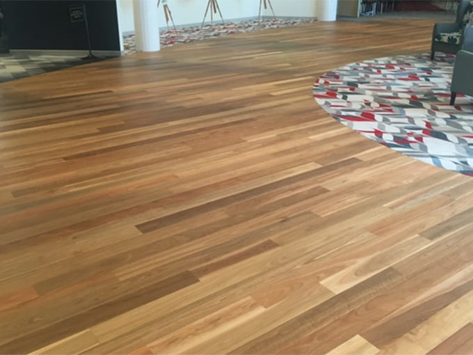 First Floors Native Timbers - Spotted Gum – Engineered Timber Flooring room view