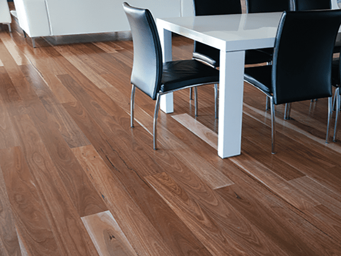 Spotted Gum - Solid Timber Flooring - 80mm x 19mm